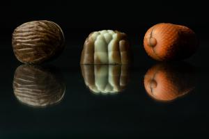 Productfoto herfstbonbons